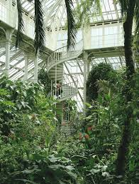 more pics of the temperate house kew gardens my dream house more pics of the temperate house kew gardens my dream house