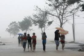 Image result for Most common rainy season diseases