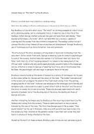 short essay samples  short story essay examples  short story essay    short essay samples