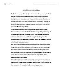 essay on cultural diversity your essay on cultural diversity