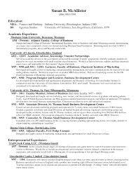 plan essay marketing plan essay
