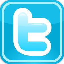 Risultati immagini per logo twitter