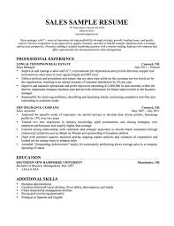 resume template resume template resume skills and interests resume template skills section