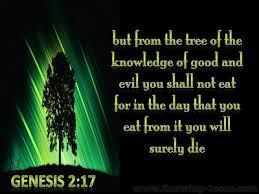 Image result for Genesis 1:31