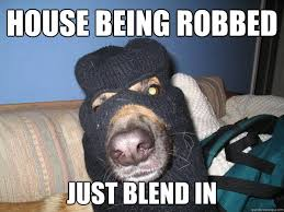 Awful Guard Dog memes | quickmeme via Relatably.com