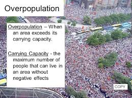 short essay on overpopulation in india   writinggroups   web fc  comshort essay on overpopulation in