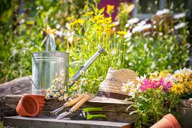essay about gardening essay about gardening atsl ip essay about essay on gardening as a hobbyalbertsons acirc easy steps to start a vegetable garden