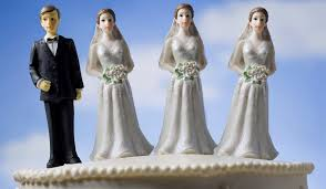 polygamy essayleaving the church       polygamy and polyandry by eric nelson