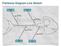 fishbone diagram   line sketch   editable powerpoint pptmore views  fishbone diagram chart   editable