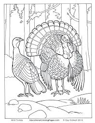 Small Picture Realistic Animal Coloring Pages Coloring Pages embroidery