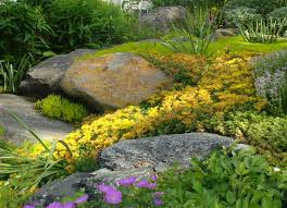 amazing garden with rocks exterior bedroommagnificent lush landscaping ideas