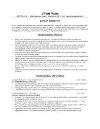 resume objective examples s associate cipanewsletter business resume objective examples template