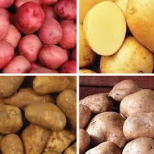 Mempercepat penyembuhan luka dengan kentang