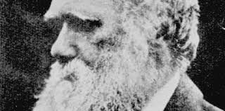 Charles Darwin zealots have made science a substitute religion ...