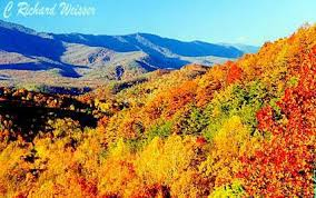 Image result for smokies in fall