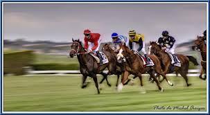 """Résultat de recherche d'images pour """"image de course de chevaux"""""""