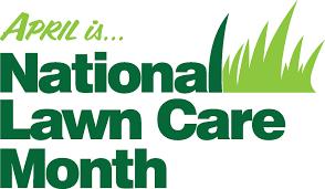 myth busting lawn care tips landscape workshop lawncaremonth