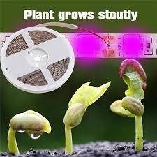 Luminous Efficiency <b>Plant Growth</b> LED <b>Strip Lights</b>-buy at a low ...