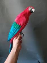 Модель попугая с синими и красными перьями, Реалистичная ...