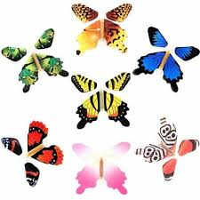 7PCS COLORFUL <b>MAGIC</b> Flying <b>Butterfly</b> Change From Empty ...