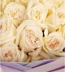<b>Букет</b>-<b>соло</b> ароматных роз White OHara (15,25,35,51 или 75 ...