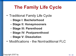 family life cycle essay outline   homework for you    family life cycle essay outline   image