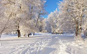 information technolgy health education entertainment current in winter the days become shorter and the night become longer in winter the mountainous area of covered the snow mostly people like to