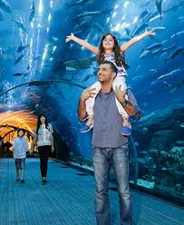 Dubai <b>Aquarium</b> and <b>Underwater</b> Zoo | The Dubai Mall