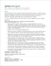 more  resume templates  primer resume 12