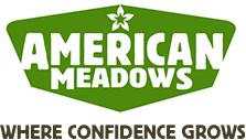 Candytuft Seeds - Iberis umbellata | American Meadows