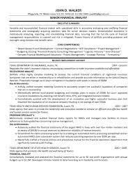 finance resume executive summary sample cv english resume