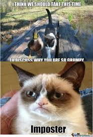 RMX] Actual Advice Mallard Meets Grumpy Cat by redtrainer - Meme ... via Relatably.com