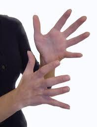 Výsledek obrázku pro znakový jazyk