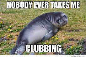 Sad Seal – Meme | WeKnowMemes via Relatably.com