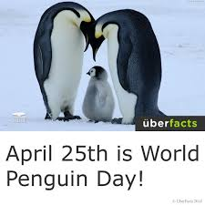 Image result for world penguin day
