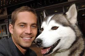 Paul Walker dead: How the son of a sewer worker went from Pampers advert to Fast ... - Paul-Walker-Dead