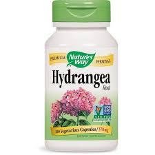 NATURES WAY - <b>Hydrangea Root</b> 370 mg - 10- Buy Online in ...