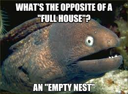 Bad Joke Eel memes | quickmeme via Relatably.com