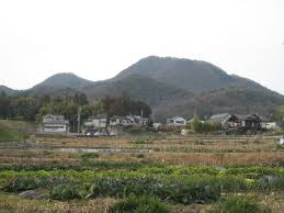 navigator  fields in early spring at the foot of mt nijo nara photo ad blankestijn