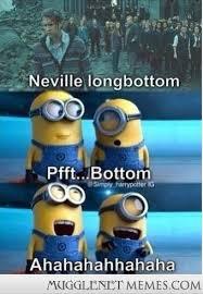 despicable - MuggleNet Memes via Relatably.com