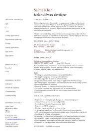 junior software developer cv sample  resume writing  curriculum    junior software developer cv sample  resume writing  curriculum vitae  cv examples  sample