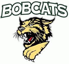 Image result for bobcats logo