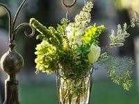 200+ Green flowers ideas | green flowers, <b>flowers</b>, <b>green</b>