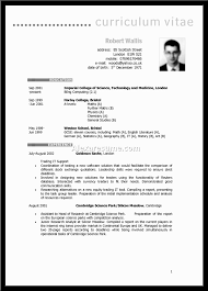 s resume profile summary s associate on resume resume template sample retail s resume examples summary for resume example for