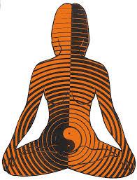 Resultado de imagen para hara chakra