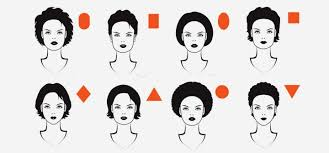 diffe face shapes