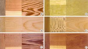 Wood - Wood as a material | Britannica