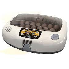 Купить домашний <b>инкубатор Rcom 20 Max</b> для яиц птиц недорого