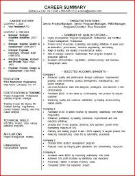 resume example   professional summary on resume examples of    professional summary on resume examples of professional summary on a resume powerful summary of qualifications resume