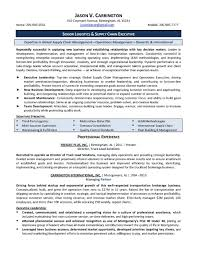 executive resume samples resume logistics security operations it manager resume example